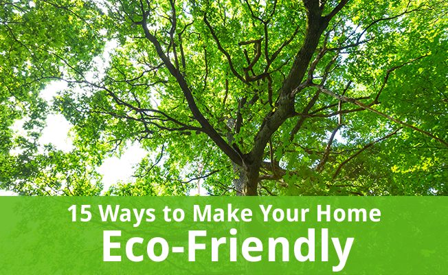 Trees with green leaves