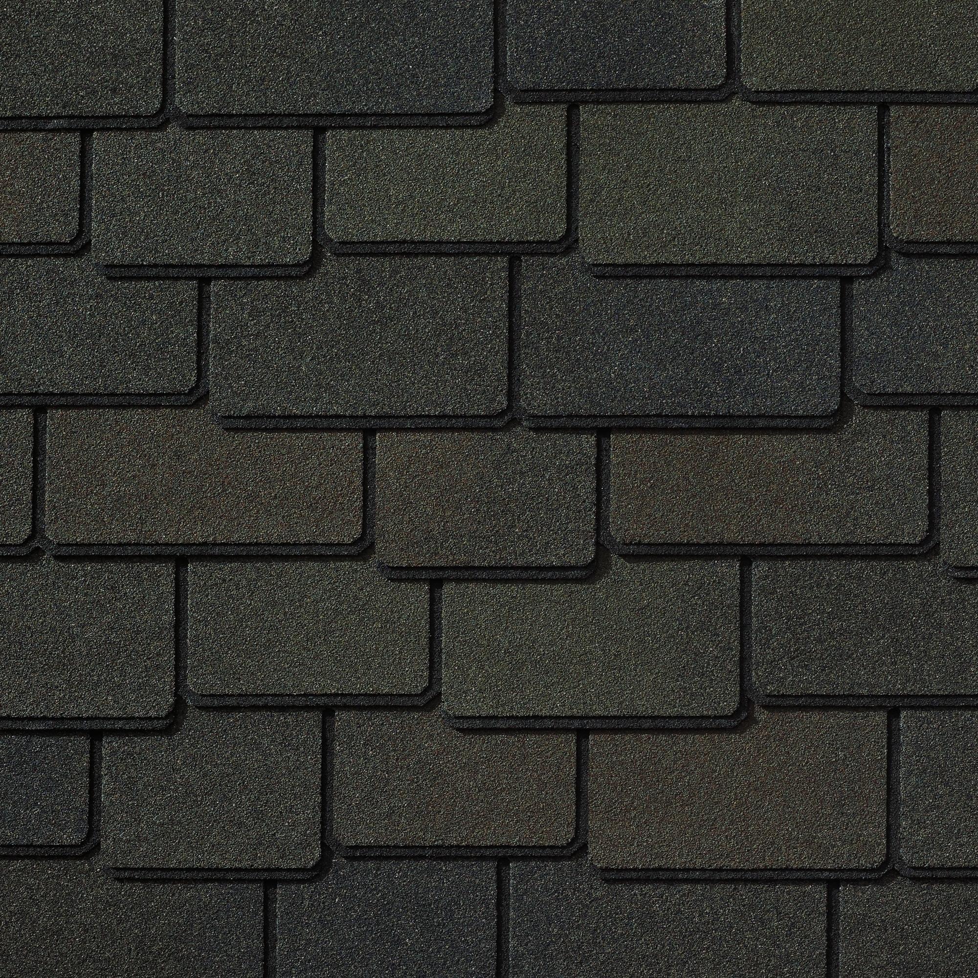 Canterbury Black