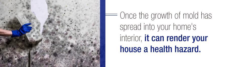 Health Hazards of Mold